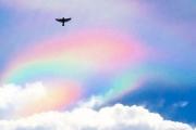 Огненную радугу над Сингапуром приняли за НЛО
