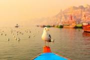 Индийские реки признаны живыми существами