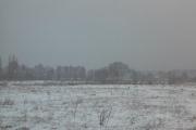 Черноземье: ренессанс зимы продлится неделю