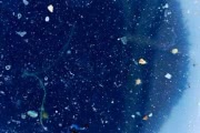 В Тихом океане может находиться второе гигантское мусорное пятно