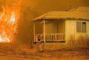 Огромный пожар у национального парка Йосемити локализован на 40 %