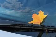 Погода в Москве: предзимние сложности на дорогах